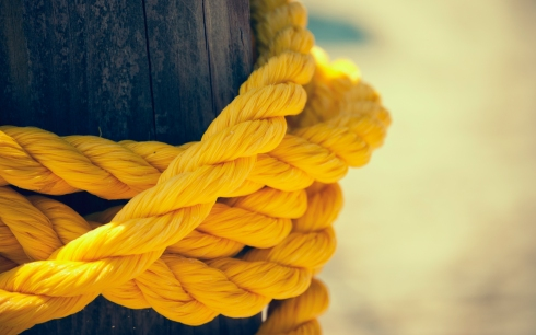 yellow-knot.jpg